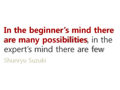 in-the-beginners-mind